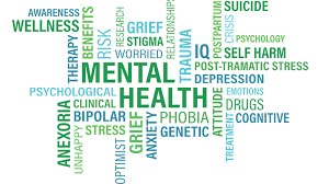 mental illness disability lawyer