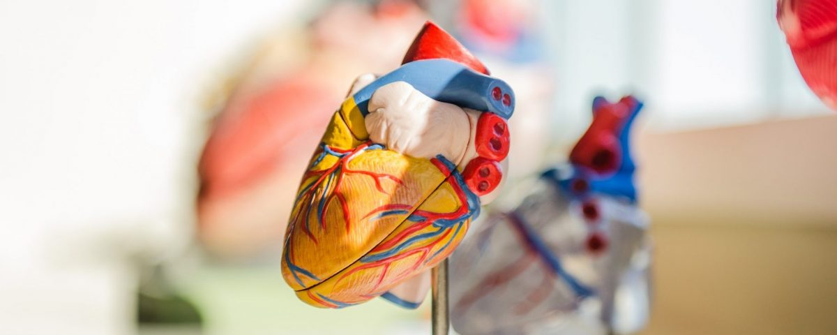 What Cardiovascular Conditions Qualify for Disability Benefits?